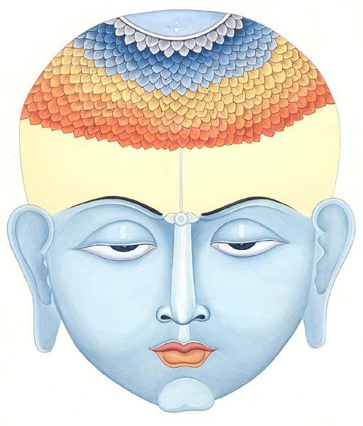 Chakras | Amber's Hatha Yoga